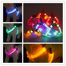Harnais Lumineux LED pour Chien